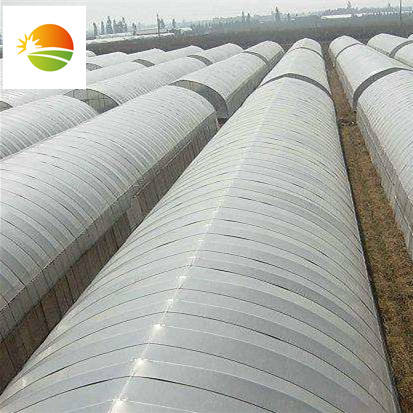 High quality film tunnel greenhouse