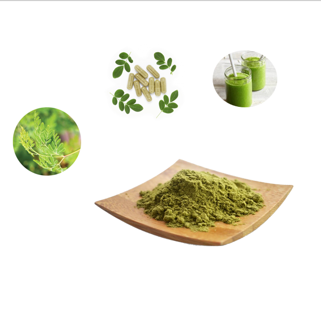 Natural Pure Natural Plant Moringa Oleifera Leaf Extract Powder