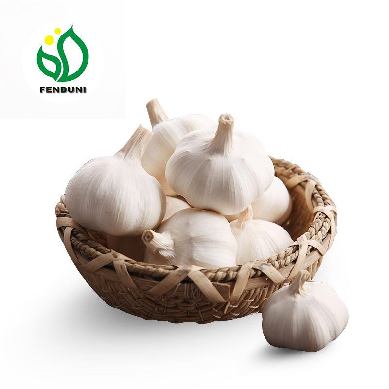 China Fresh Pure White Garlic 2020 new crop 4p .5p .3p pure white garlic