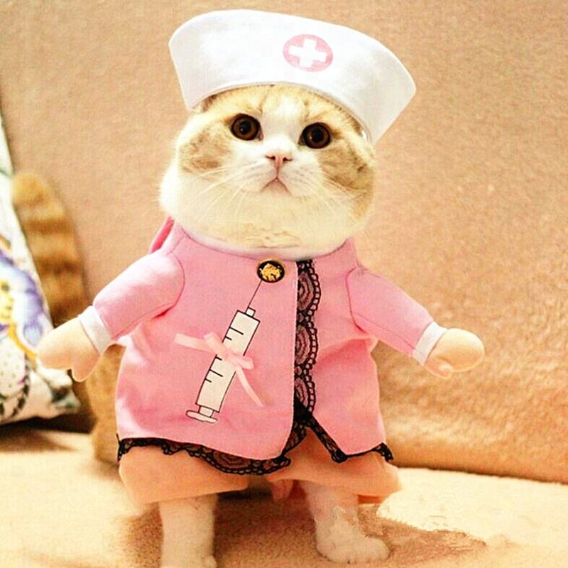 Factory price wholesale nurse model Halloween cosplay pets clothes dogs dressing cats funny costume