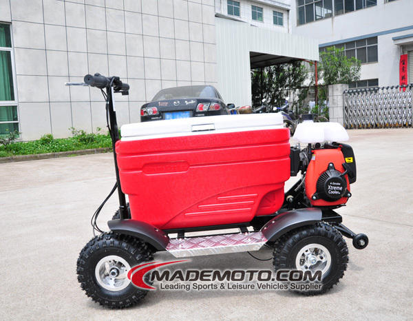Max load 100kg 4 Stroke 43cc Engine Racing Cooler Scooter