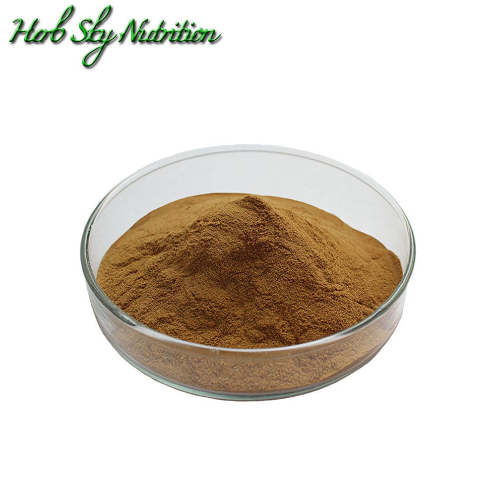 Best price 100% High Quality Burdock Root Extract 10:1