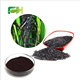 100% Natural Red Rice Peel Extract C3G Cyanidin-3-O-glucoside, Cyanidin3Oglucoside