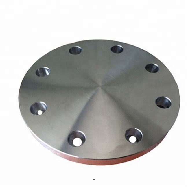 Stainless steel 317 flat face blff 급 150 ansi flange 눈 먼