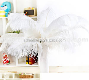 bulk ostrich feathers for wedding decoration 70-75cm feathers Wedding Party Supplies