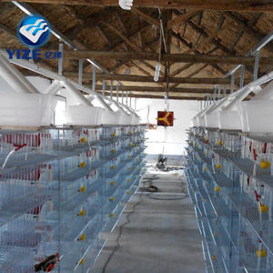 Quail cage with drinking system feeding system 6 tiers and two rooms