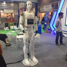 Intelligent Multi-function Smart Chinese Humanoid Robot