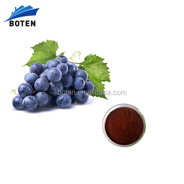 Low Price Of ISO Certified Hot Sale Grape Seed With Good Price