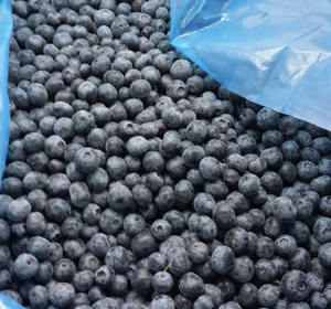 Good quality blueberry prices wholesale for iqf frozen blueberry