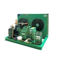3hp 5hp 6hp 10hp Bitzer Air Cooled Compressor Condensing Unit for Cooling System refrigeration