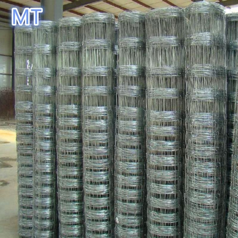cheap galvanized iron wire mesh cattle / horse / deer / field fence