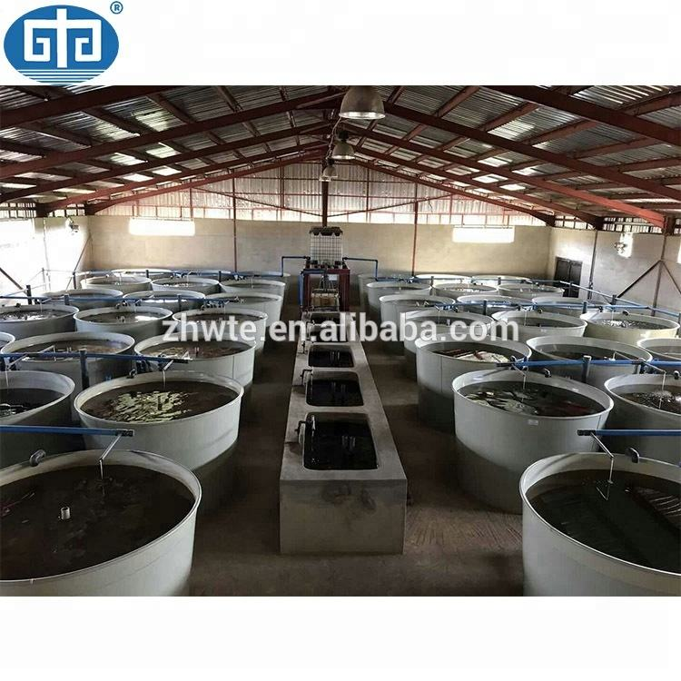 Fish Ras Hatchery Equipment Frp Fiberglass Ras Aquaculture Fully Automatic Indoor Ras