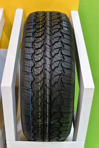 Tyres in Size 205/55 R16 with high performance