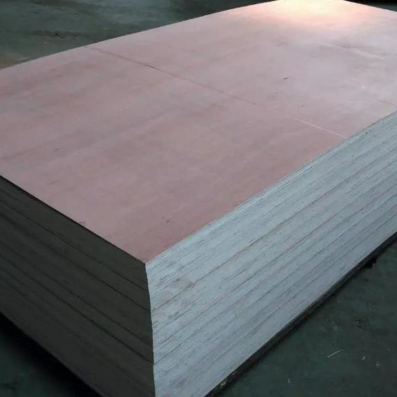 4x8 cheap hardwood bintangor plywood for sale