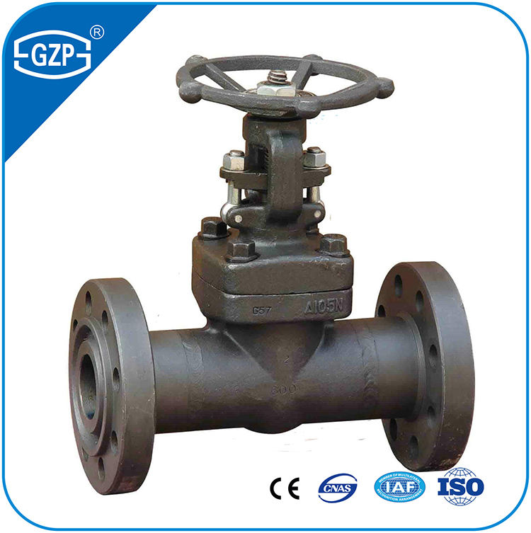 "Gesmeed Roestvrij Carbon Staal Astm A105 A105N A266-2 A182 F304 F304L F316 F316L F317L 1/2 ""1"" 2 ""flens End Gate Valve"