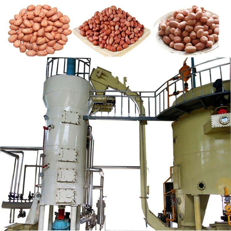 peanut seed oil solvent extraction mill machine/rotocel extractor plant