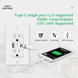Dual Plug Electric Wall Socket With 2 USB Port Outlet Panel Switch USA