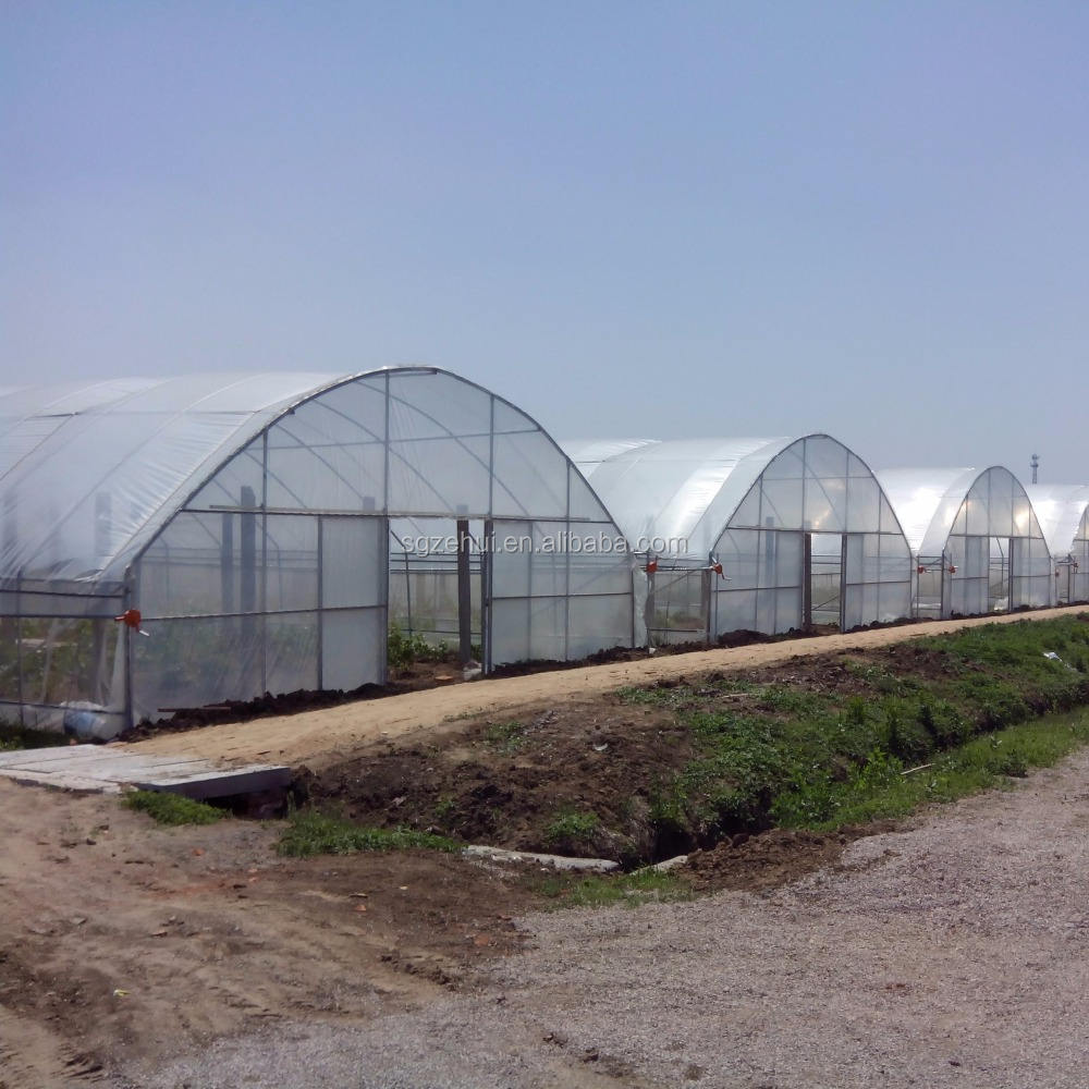 Greenhouse Price Agricultural Used Poly Film Tunnel Greenhouse For Planting