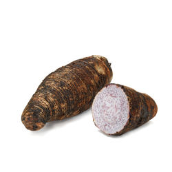 Wholesale high quality fresh taro in Egypt