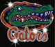 Florida Gator CHOMP CHOMP Iron on Rhinestone Transfer