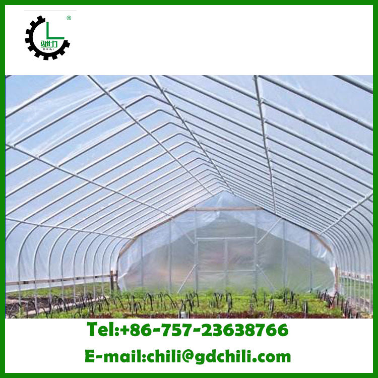 Blow Molding CHILI Polyethylene Materials Clear Protection Greenhouse Plastic UV Film