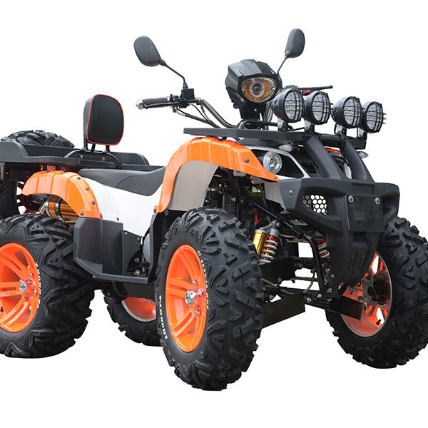Quadricyclemini jeep willys 250cc motore potente ATV veicolo per adulti con CE