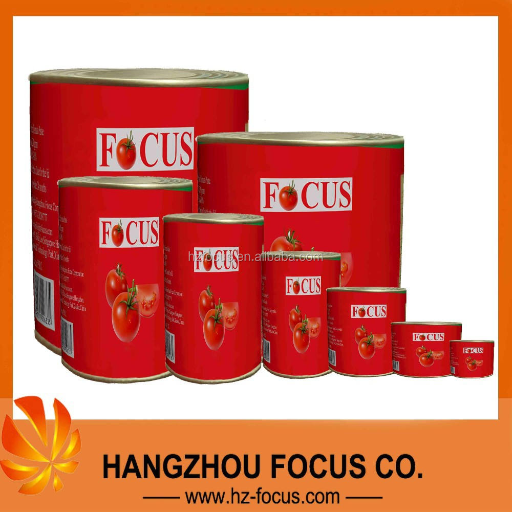 canned tomato paste brix 28-30% to dubai market
