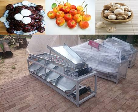 Strawberry sorting/grading machine,plums grading/grader equipment