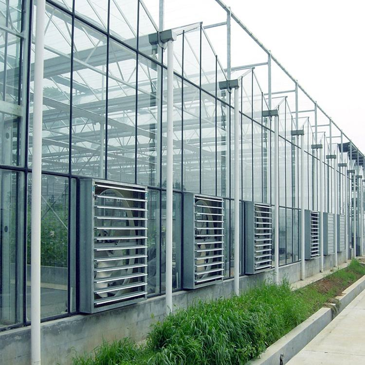 Cheap agriculture multispan greenhouse Venlo Glass Greenhouse Hydroponic Growing System commercial greenhouse for cultivation