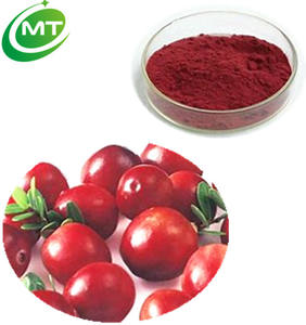 Organische 4: 1 cranberry extract poeder cranberry fruit extract
