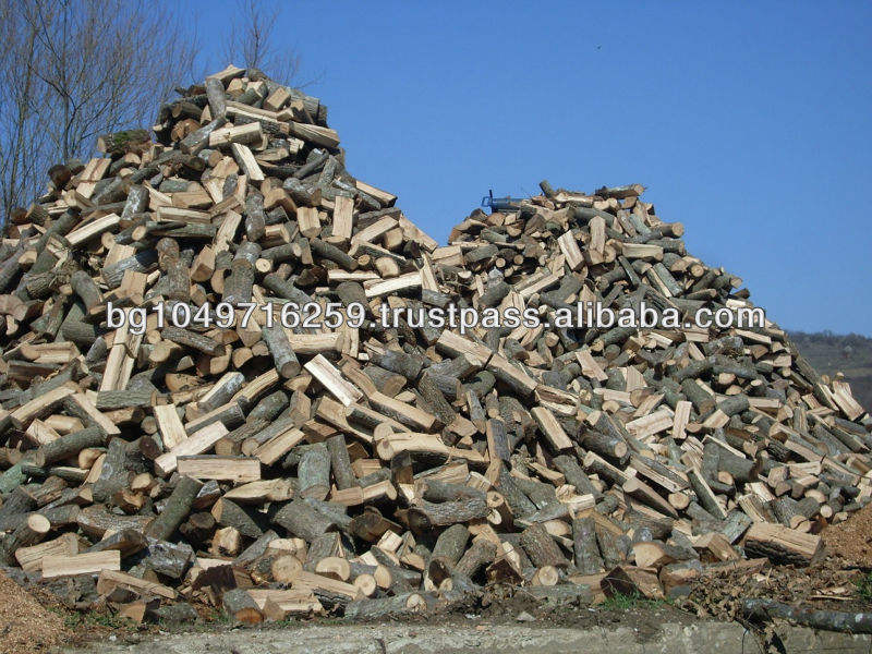 Fresh cut Ash firewood