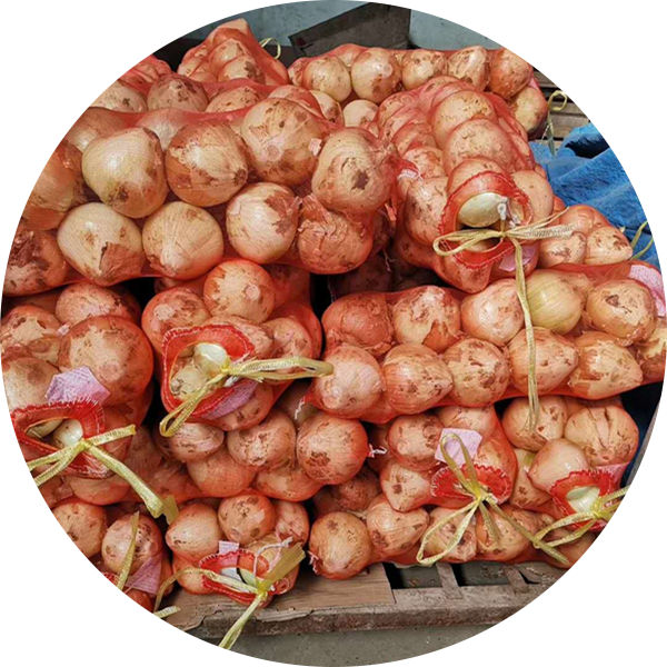 2019 New Crop Top Grade 20 KG package Diameter > 7 cm Non-Peeled Fresh Yellow Onion for sale