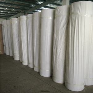 cheap and high quality Non woven Polypropylene Fabric non woven polypropylene rolls name of fabric for curtain