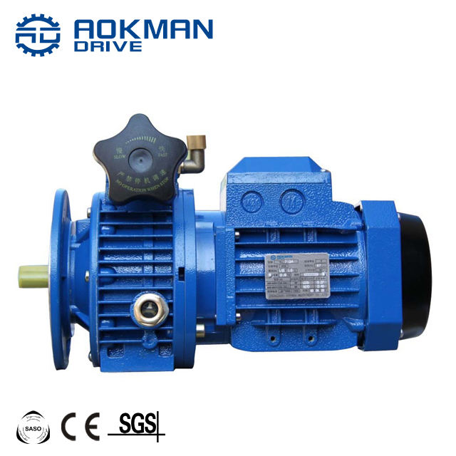 AOKMAN UDL Series 220V Variable Speed Electric Motor Gearbox