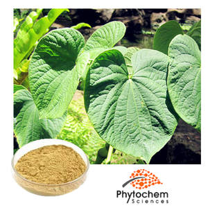 wholesale kava extract from kava root for pharmaceutical raw material