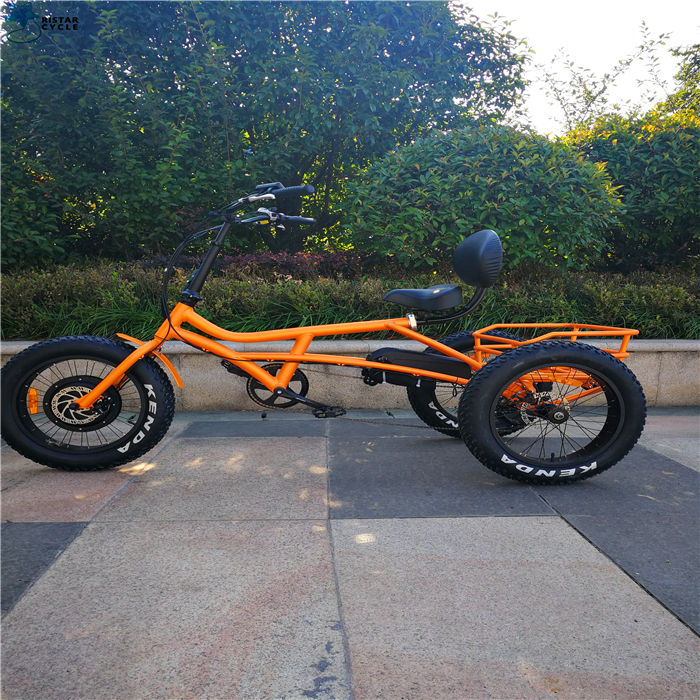 3 front wheel trikes Motorized E bike/Electric assist Cargo Trike/Three Electric Cargo Tricycle for sale