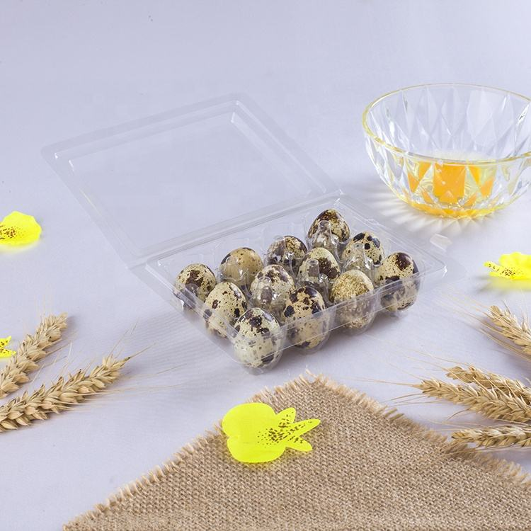 factory price 12 hole pack clear disposable plastic quail egg tray