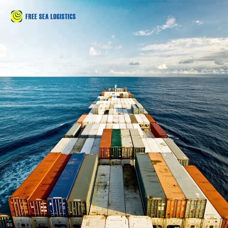 import export custom clearance air sea freight forwarder china to India
