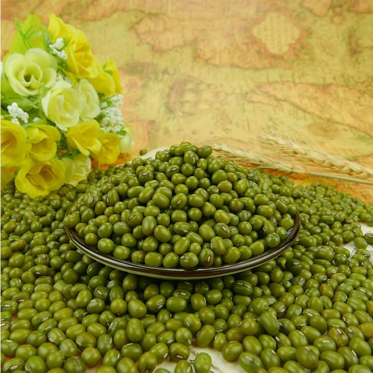 2020 wholesale Green mung beans for sprouting