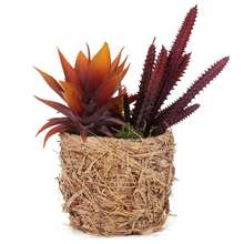 Artificial flower making cactus artificial succulent plant potted artificial succulent