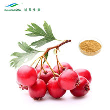 Hawthorn Leaf and Flower Extract