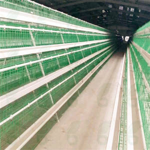 Good price 4 tiers chicken battery cages laying hens used poultry breeding equipments