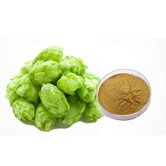 Pure Natural Plant 5% Flavones Hops Flower Extract Powder