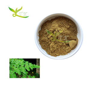 Rivenditore Moringa Leaf Powder Germania