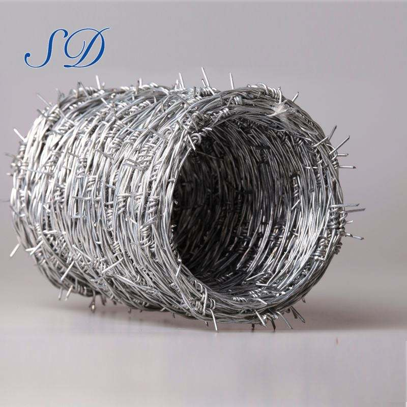 Electro Galvanized Iron Factory Supply Best Price Barbed Wire