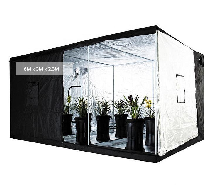 Grote Maat Promotionele Hydrocultuur Groeien Tent 600Cm <span class=keywords><strong>X</strong></span> 300Cm <span class=keywords><strong>X</strong></span> 230Cm 600d 1680D Mylar Stof 25Mm metalen <span class=keywords><strong>Buizen</strong></span> Grow Tent