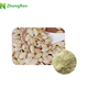 Powder form and drum packaging Pumpkin Seed Extract / Powder in stock