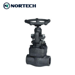 Industrial API602 forged steel stop globe valve