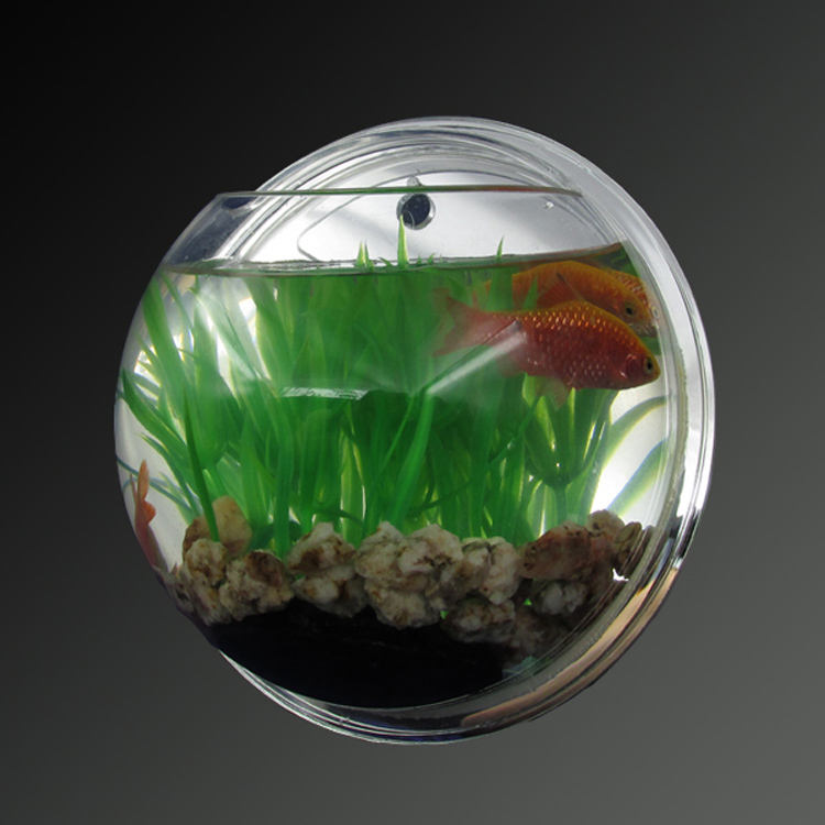 Mini wall hanging wall mounted plastic acrylic fish tank with mirror