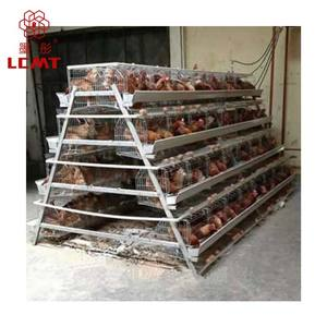 High quality poultry equipment H type chicken layer cage sales